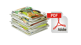 Upload and convert your PDF
